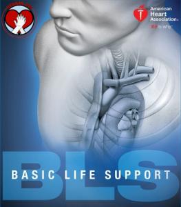 AHA BLS Provider course